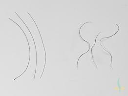 La bio-ingénierie comme source possible de transplants de cheveux autologues
